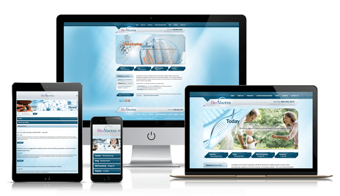 Professional Responsive Web Design